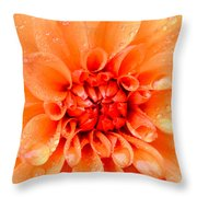 Raindrops In Spring Throw Pillow