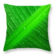 Raindrops ... Throw Pillow