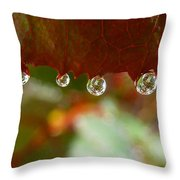 Raindrops On A Red Leaf Throw Pillow