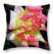 Raindrops On A Rose Throw Pillow