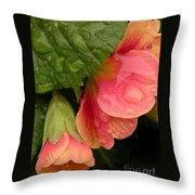 Raindrops On Coral Flowers Throw Pillow