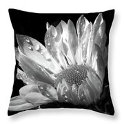 Raindrops On Daisy Black And White Throw Pillow