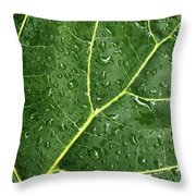 Raindrops On Fiddle Leaf Throw Pillow