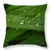Raindrops On Green Leaves Throw Pillow