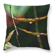 Raindrops On Leaf 3 Throw Pillow