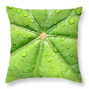 Raindrops On Leaf Throw Pillow