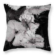 Raindrops On Petals Monochrome Throw Pillow