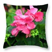 Raindrops On Pink Geranium Throw Pillow