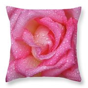 Raindrops On Pink Rose Throw Pillow