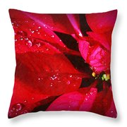 Raindrops On Red Poinsettia Throw Pillow