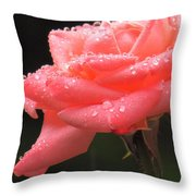 Raindrops On Roses... Throw Pillow