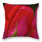 Raindrops On Roses Throw Pillow by Valeria Donaldson
