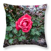 Raindrops On The Leaves Throw Pillow