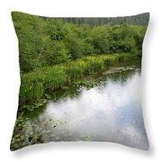 Raindrops On The Little Spokane Throw Pillow