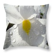 Raindrops On White Irises Flowers Sunlit Baslee Troutman Throw Pillow