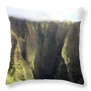 Rainforest Aerial View Throw Pillow