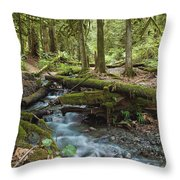 Rainforest At Bridal Veil Falls - British Columbia Throw Pillow