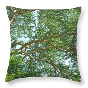 Rainforest Canopy Throw Pillow