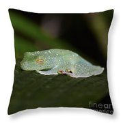Rainforest Detail.. Throw Pillow
