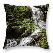 Rainforest Falls Throw Pillow