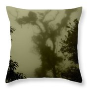 Rainforest IIi  Throw Pillow