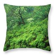 Rainforest Maui Throw Pillow