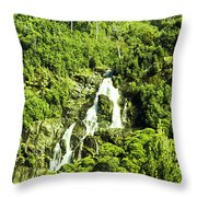 Rainforest Rapids Throw Pillow