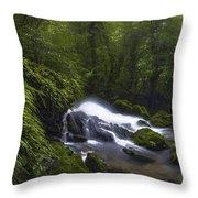Rainforest Riverflow Scene Throw Pillow