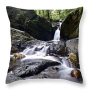 Rainforest Stream Throw Pillow