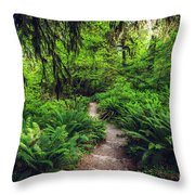 Rainforest Trail Throw Pillow
