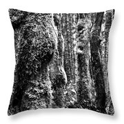 Rainforest Ubiquitous Growth  Throw Pillow