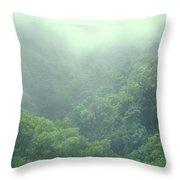 Rainforest Valley Near Hana Throw Pillow