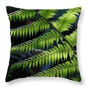 Rainforest Wonder Throw Pillow