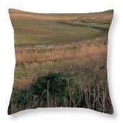 Rainham Marshes Throw Pillow
