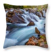 Rainier Runoff Throw Pillow