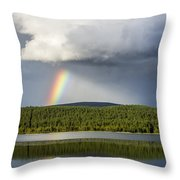 Rainstick Throw Pillow