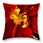 Rainy Day Dahlia Throw Pillow