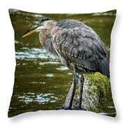 Rainy Day Heron Throw Pillow by Belinda Greb