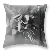 Rainy Day In June Throw Pillow