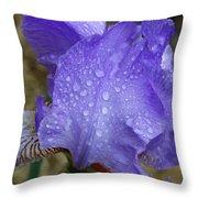 Rainy Day Iris Throw Pillow