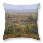 Rainy Day On The Plains Throw Pillow