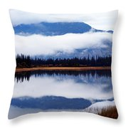 Rainy Day Reflections Throw Pillow