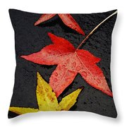 Rainy Day Trio Throw Pillow