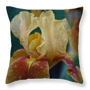 Rainy Iris Throw Pillow
