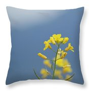 Rainy Morning In Spanish Banks Throw Pillow