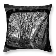 Rainy Reflections Throw Pillow