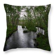 Rainy River. Koirajoki Throw Pillow