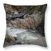 Rainy Rocky Rapids Throw Pillow