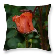 Rainy Rose Bud Throw Pillow
