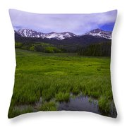 Rainy Season Throw Pillow by Barbara Schultheis